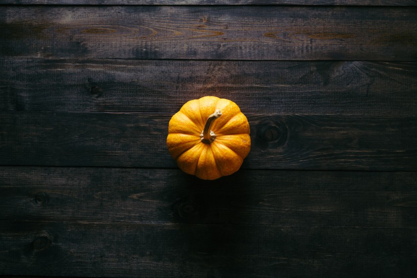 Thanksgiving HD Wallpapers, Images & Pictures, Photos, Litle Pumpkin Background