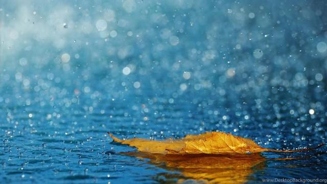 3840x2160 Wallpaper HD   Best Wallpaper For Desktop 4k, Rain, Water Drops, Leaf, Fall