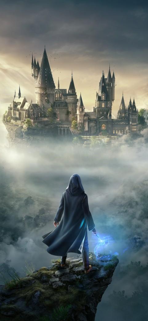 Hogwarts Legacy Mobile Wallpaper, Harry Poter Game, Wizarding world
